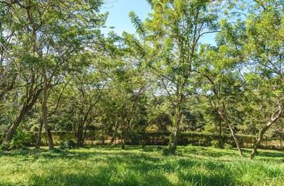 Hilltop_Estates_11_08_small.jpg