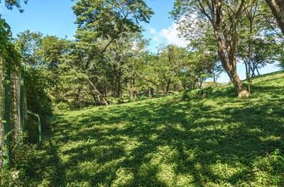 Hilltop_Estates_11_09_small.jpg