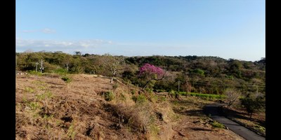 Hacienda del Mar 3.jpg
