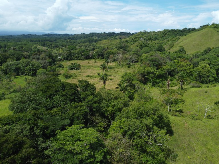 Countryside, Mountain, Near the Coast, Oceanfront and Riverfront Agricultural Land For Sale in Golfito