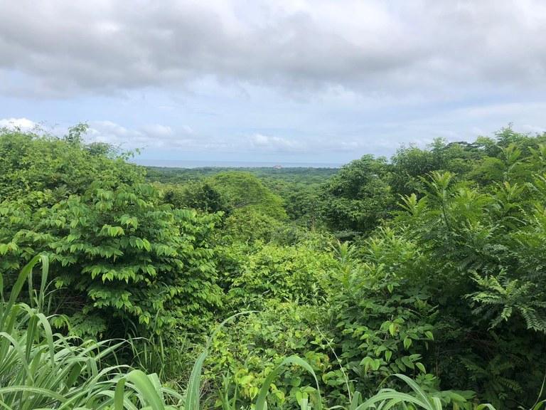 Spectacular private ocean view farm in Tamarindo, Costa Rica