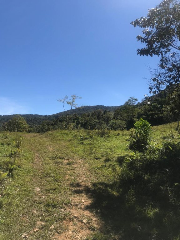 Mountain Reserve/Protected Area For Sale in Aguacaliente (San Francisco)