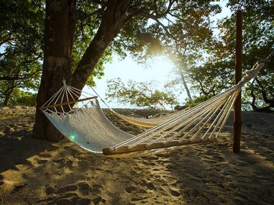 Beach Side Hammock