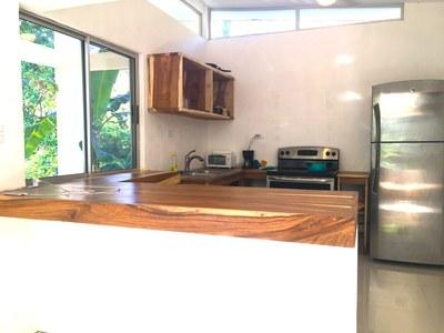 Aqua Apartment - Playa Potrero - Surfside Rental Home Kitchen