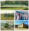 Casa colonial-Familiar-Alquiler-Rent-San Isidro-Heredia-Oro Tico Realty.png