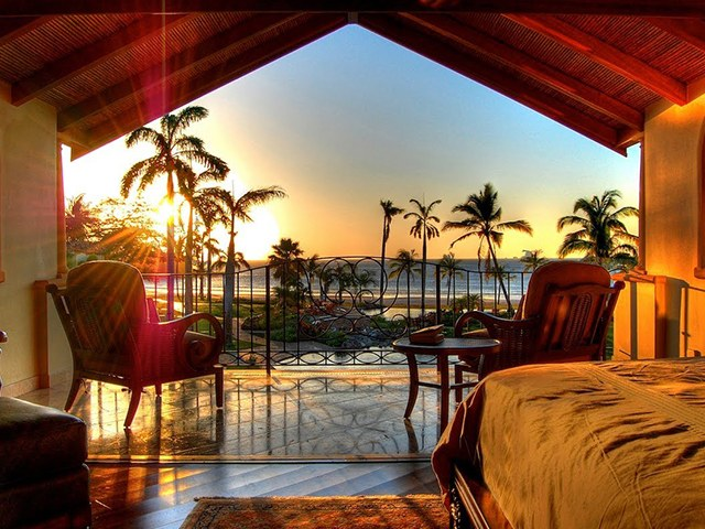 #24 The Palms: An Experience For Those Who Value Perfection!