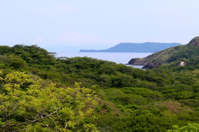 Punta Playa Vistas Developement-North Ocean View