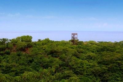 Punta Playa Vistas Developement-Ocean View