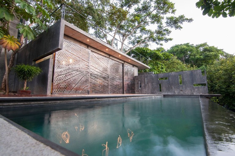 Contemporary tree house award winning home with infinity for Award winning contemporary homes