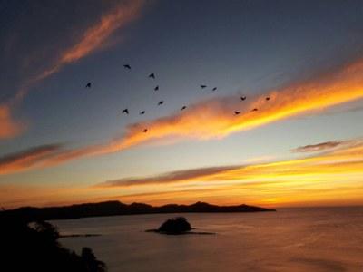Sunset Views Year Round