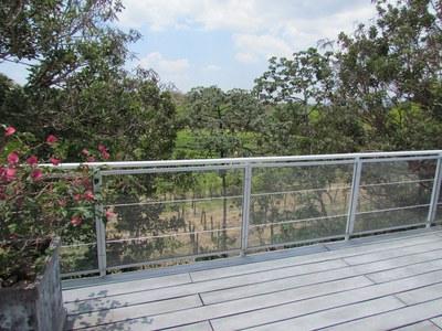 deck views.JPG