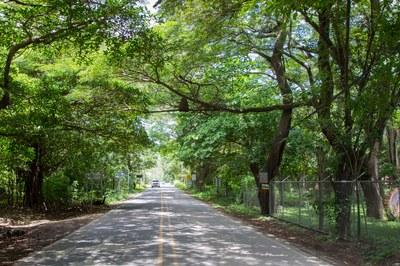 Playa-Potrero-Main-Road