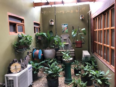 4- Interior garden (3).jpg