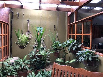 4- Interior garden (4).jpg