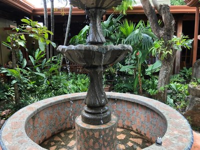 4- Interior garden (1).jpg