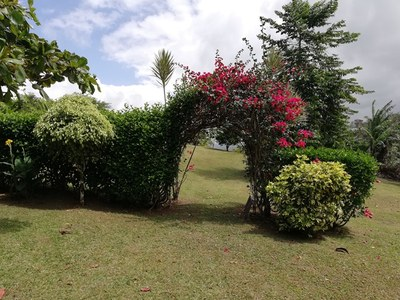 Flowering Archway to Sitting Area & Lake View