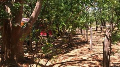Rural house in La Cruz - RS1900172 (12).jpg