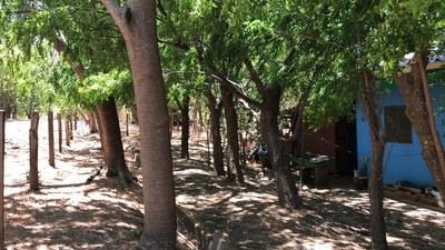 Rural house in La Cruz - RS1900172 (15).jpg