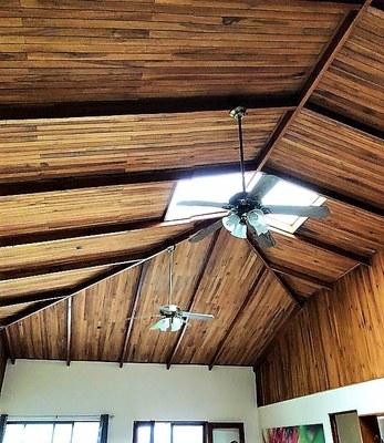 Sala Ceiling c (2).jpeg
