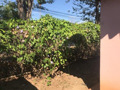 KRAIN_Villaggio Flor del Pacifico 2 Unit 427B