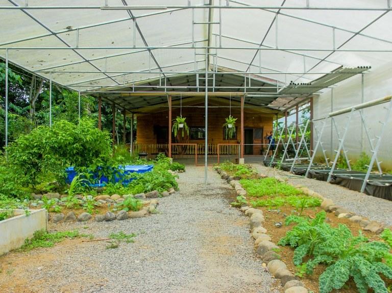 House For Sale in La Fortuna