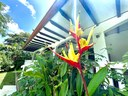 terasse - Bed and breakfast  for sale Junquillal HG Real Estate Costa Rica Exclusive listing (30).JPEG