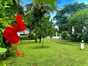 Bed and breakfast  for sale Junquillal HG Real Estate Costa Rica Exclusive listing (56).JPEG